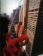 Spiderman-rope swing
