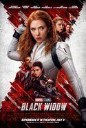 Black Widow ALT Bottom Poster
