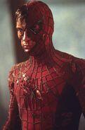Spiderman-damaged