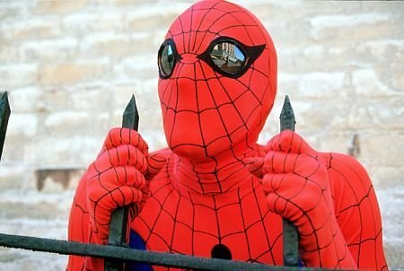 Peter Parker (Earth-730911)