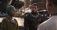 Black Panther (film) Stills 19