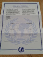 The Sokovia Accords Document 1