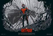 Ant-man-sdcc-b1445