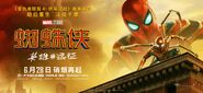 FFH Chinese Banner 01