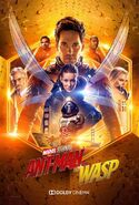 Ant-man-and-the-wasp-dolby-poster-1115415