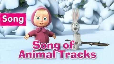 Song of Animal Tracks