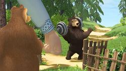 30 Гималайский медведь.jpg