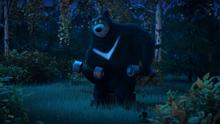 56 Гималайский медведь
