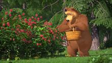 66 Медведица