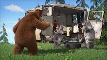 74 Медведь и Волки