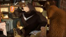 51 Медведь и Гималайский медведь 2