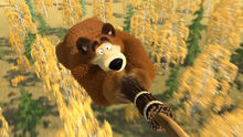 31 Медведь