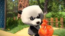 51 Панда