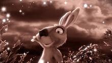 12 Заяц