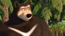 47 Гималайский медведь