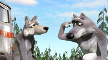 28 Волки