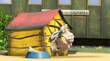38 Пёс, Коза и Розочка