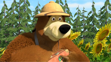 37 Медведь 2