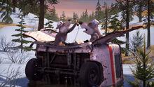 67 Волки