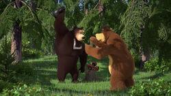 74 Медведь и Гималайский.jpg