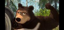 07 Гималайский медведь 2