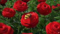 64 Пчела