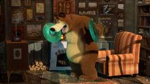 09 Медведь 5