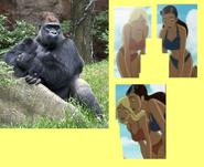 Girls Normal by Gorilla