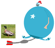 Susan Inflate by Mallard Duck