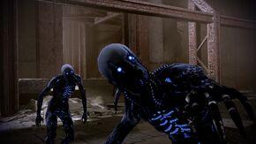 Shepard disturbs the dead
