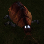 Creatures Space Beetle.png
