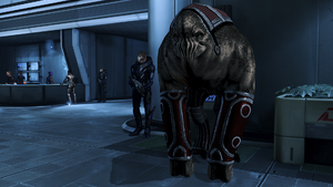 Urgently, the elcor ambassador wishes to speak with you. Holding sorrow, it's about his homeworld.