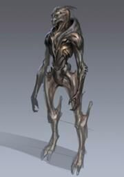180px-Turian without armor.jpg