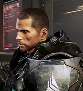 Klon Sheparda