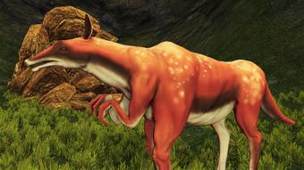 A suspicious-seeming bovine