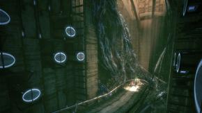 The Watcher's Chamber