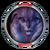 Angara Exemplar - Circle.png