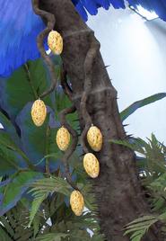 Paripo Fruit 1.png