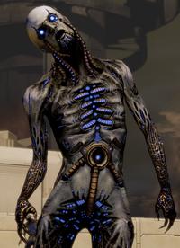 A humanoid husk