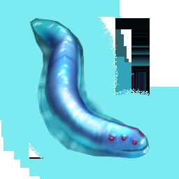 Ship eel.png