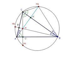 Ortocentar 2.jpg
