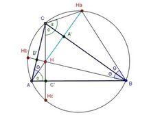 Ortocentar 3.jpg