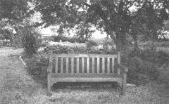 Ботанический сад фото с открытки.jpg