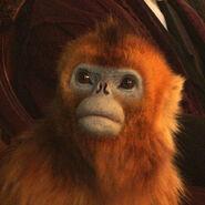 Золотая обезьяна телесериал