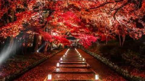 Maple Forest Night 枫林夜行 dizi flute composition