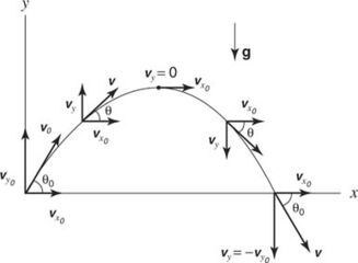 Projectile motion.jpg