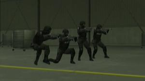 SWAT team.png