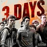 3 jours