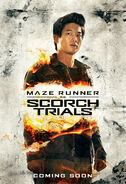 FIN01 ScorchTrials WP Minho SIMPLE
