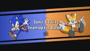Sonic and Tails Team Up 2